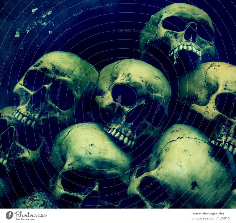 Death Proof Skelett Gehirn u. Nerven fatal vergiftet ertrinken Meer Meeresboden Algen gruselig Horrorfilm Angst Alptraum Grab Friedhof gefährlich Halloween
