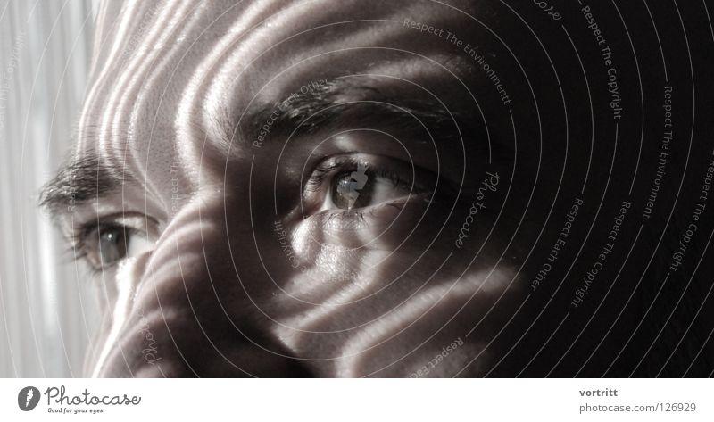 strichcode Mensch Mann Natur Sonne Gesicht Auge dunkel Haare & Frisuren hell Kunst Beleuchtung Nase planen Streifen Wissenschaften Bart