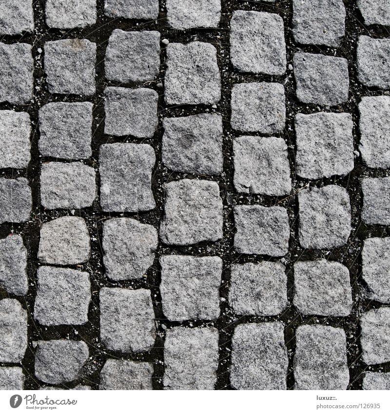 Stein für Stein Straße grau Platz Bodenbelag Quadrat Handwerk Reihe Verkehrswege Kopfsteinpflaster Parkplatz Anordnung hart vertikal Pflastersteine Marktplatz