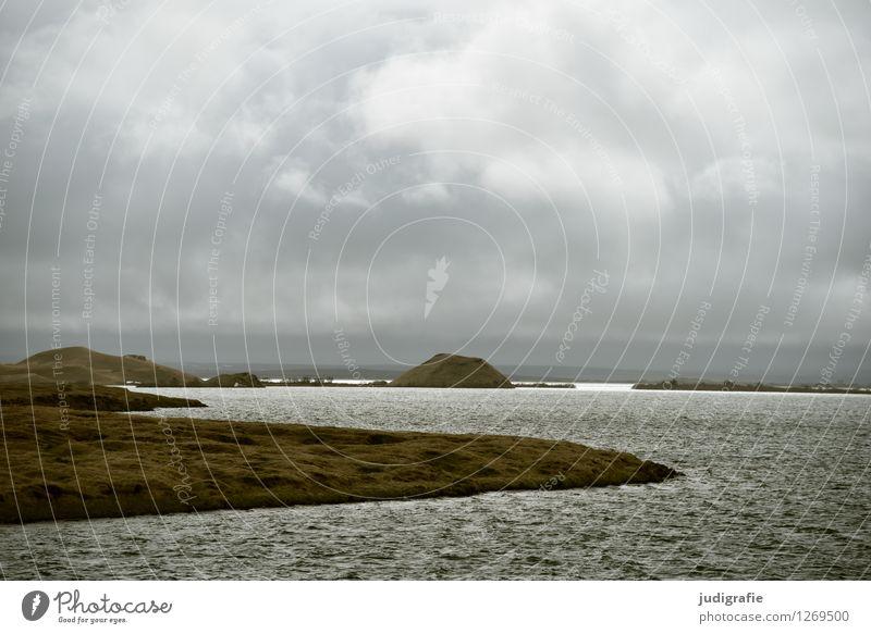 Island Umwelt Natur Landschaft Urelemente Wasser Himmel Wolken Klima Wetter Sturm Vulkan Seeufer Insel Myvatn See außergewöhnlich bedrohlich dunkel kalt