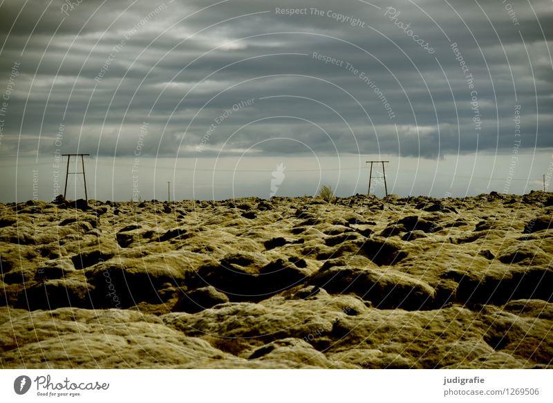 Island Energiewirtschaft Erneuerbare Energie Hochspannungsleitung Umwelt Natur Landschaft Urelemente Erde Himmel Klima Wetter Moos Wildpflanze Vulkan Lavafeld