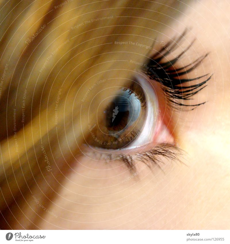 Märchenaugen Pupille Wimpern Wimperntusche geschminkt Frau Selbstportrait Haarsträhne schwarz braun Blick Reflexion & Spiegelung Regenbogenhaut Haare & Frisuren