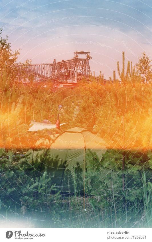 Festival Season   Zeltplatz unterm Kran Natur Ferien & Urlaub & Reisen Sommer Pflanze Lifestyle Umwelt Tourismus Freizeit & Hobby wild Angst Energiewirtschaft