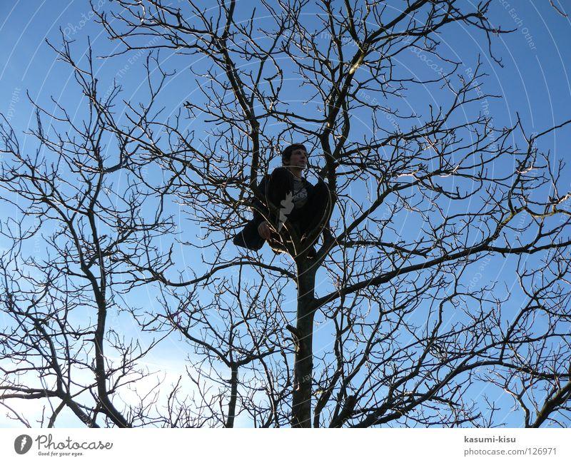 alone Mann Himmel Baum blau Winter Einsamkeit braun Klettern Ast Vertrauen