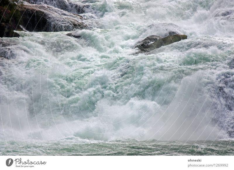 1100 - Energy Urelemente Wasser Fluss Rhein Wasserfall Rheinfall Felsen Schweiz Energie Kraft Umwelt Naturgewalt Farbfoto Außenaufnahme Menschenleer
