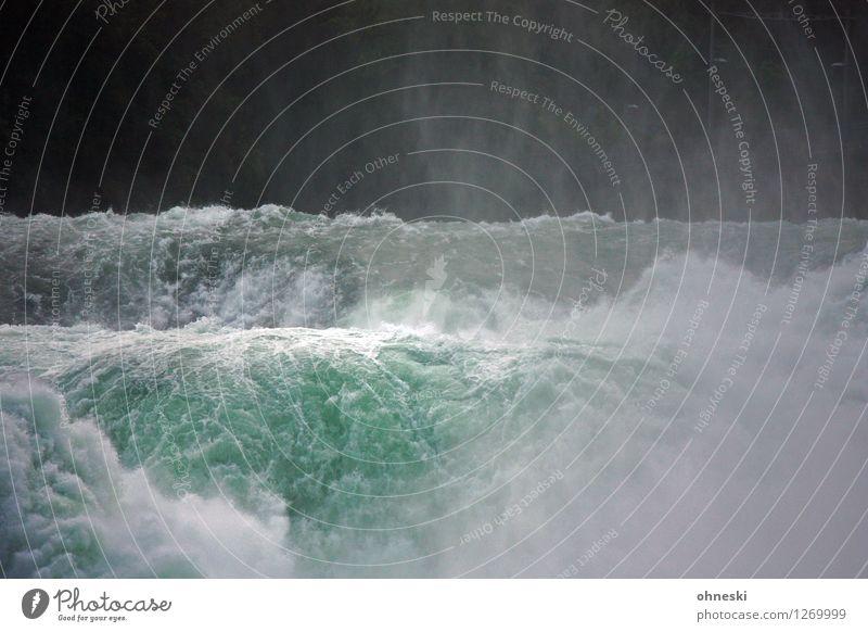 Fluten Urelemente Wasser Fluss Rhein Wasserfall Rheinfall wild grün Endzeitstimmung Energie Klima Gischt Farbfoto Außenaufnahme Textfreiraum oben Tag