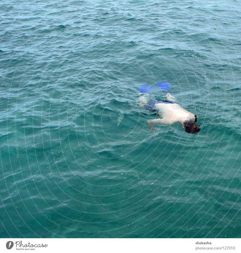 Unterwasser Mensch Mann Wasser Ferien & Urlaub & Reisen Meer Sommer ruhig Ferne Erholung Wellen Schwimmen & Baden Rücken Perspektive Klarheit tauchen Im Wasser treiben