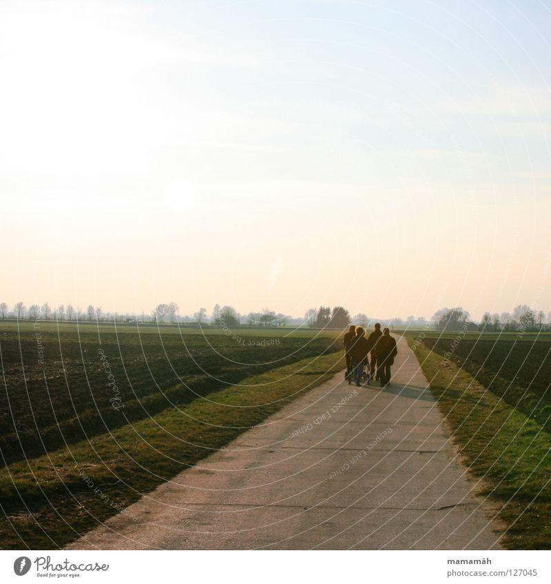 Spaziergang wandern Fußweg Sonne Feld Horizont Luft Kinderwagen Schlagloch Gras Frühling laufen Wege & Pfade Straße Natur sprechen Freude Wind Schatten
