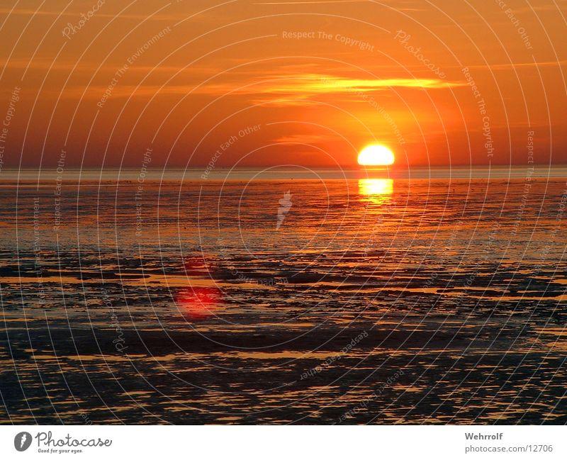 Sonnenuntergang 3 Natur Wasser Sonne Meer Gras Sehnsucht Wattenmeer