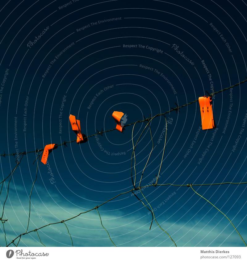 Zaunkönige Weidezaun grün schwarz dunkel Stacheldraht Stacheldrahtzaun Loch kaputt Zerstörung Jugendkriminalität Befestigung Maschendraht Guantanamo Ausbruch