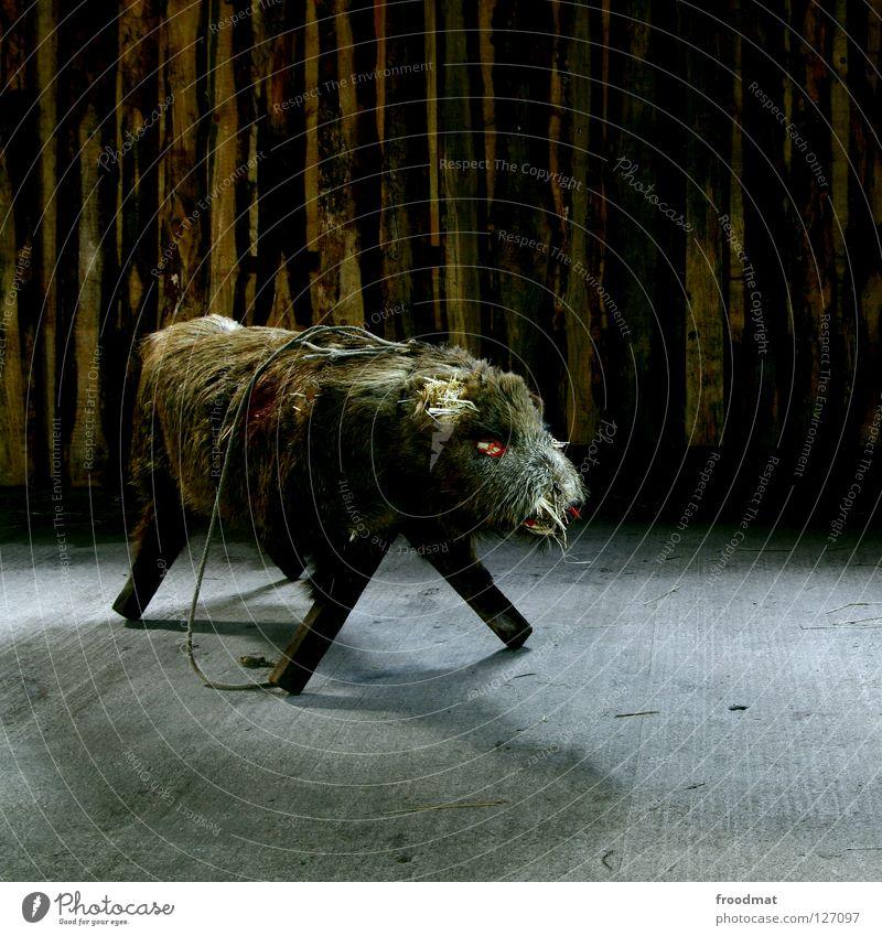 Rampensau Wildschwein Tier Fell gruselig Sau tierisch Eber Möbel Sitzgelegenheit Langzeitbelichtung dunkel Paarhufer Keiler massiv buschig Säugetier ausgestopft