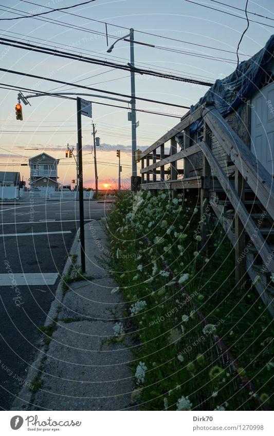 Suburbian Sunset Ferien & Urlaub & Reisen Sommer Sonne Sonnenaufgang Sonnenuntergang Schönes Wetter Blume Gras New York City Jamaica Bay Dorf Kleinstadt