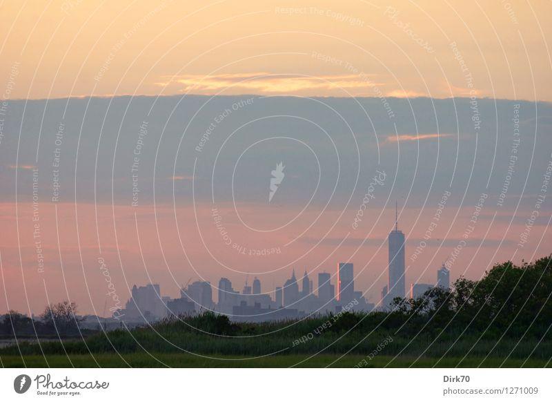 Manhattan Skyline aus der Ferne Ferien & Urlaub & Reisen Tourismus Umwelt Natur Sonnenaufgang Sonnenuntergang Sommer Schönes Wetter Baum Gras Sträucher Seeufer