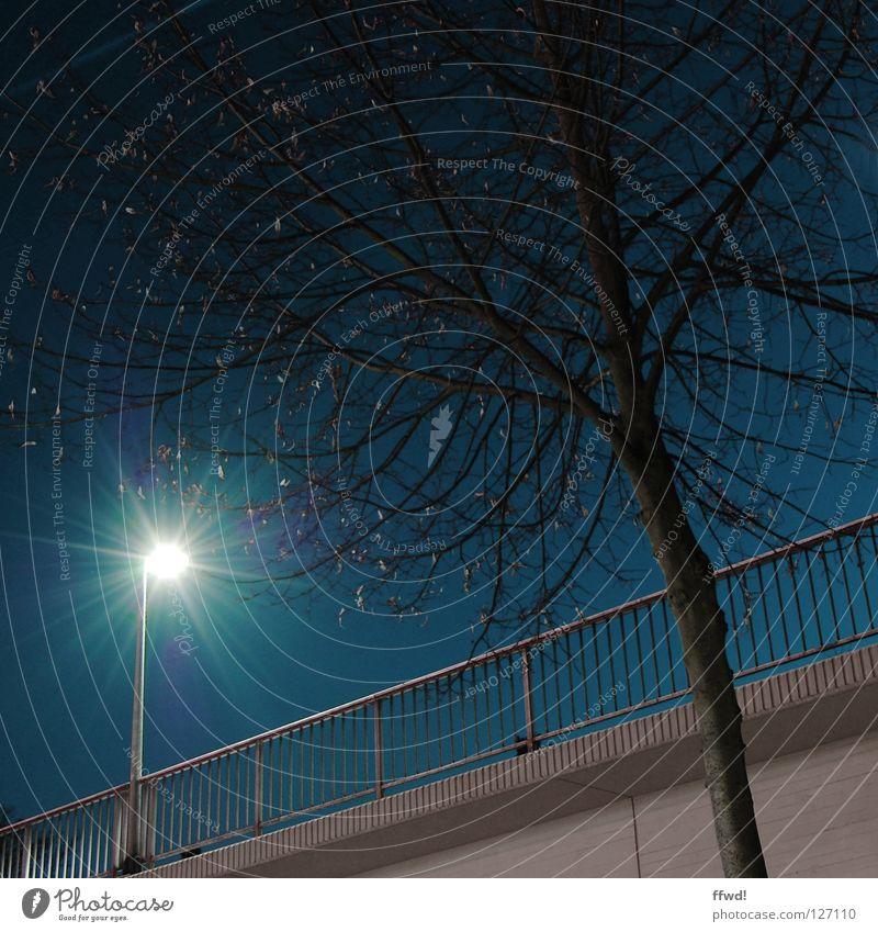 street light Baum Einsamkeit Straße Lampe dunkel Holz Beleuchtung Brücke Ast Laterne Bürgersteig Verkehrswege Baumstamm Geländer Straßenbeleuchtung Geäst