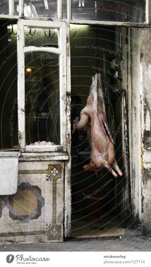 hängende sau Sau Schwein Rüssel Borsten Metzger Schweinefleisch Schaufenster Ausstellung Magen Darm dreckig Desinfektion Sauberkeit Bakterien Säugetier Tod