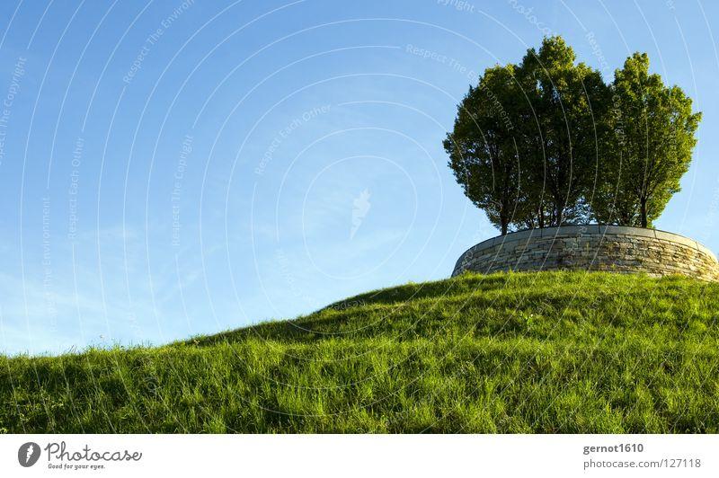 Für Bill Himmel Baum grün blau Sommer Wiese Garten Freiheit Wege & Pfade Park Landschaft Hintergrundbild Rasen Dekoration & Verzierung Hügel Schnecke