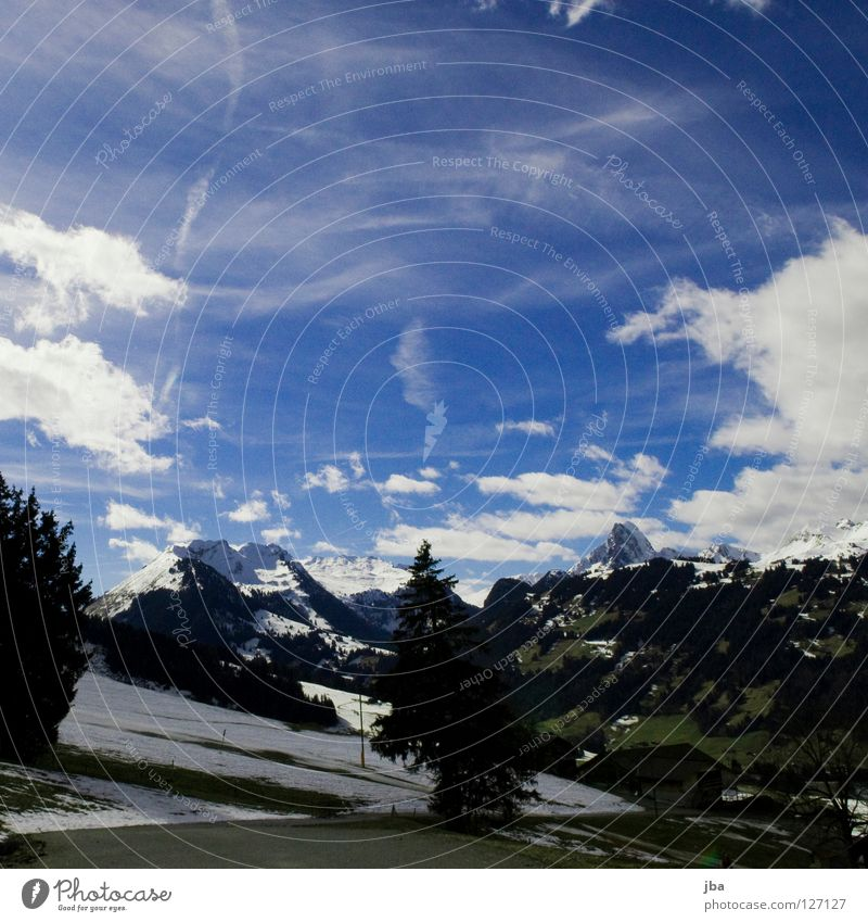 Heimat! schön Himmel Baum blau Winter Ferien & Urlaub & Reisen ruhig Wolken Straße Schnee Erholung Berge u. Gebirge Frühling Wärme Physik Tanne