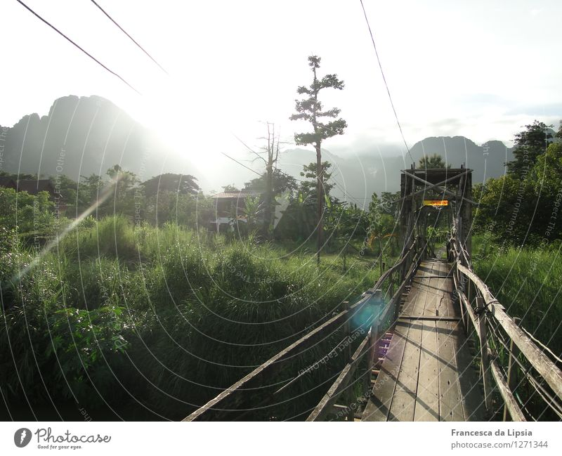 Der Weg ist das Ziel Abenteuer Ferne Freiheit Berge u. Gebirge wandern Flussufer Holz entdecken Ferien & Urlaub & Reisen leuchten träumen natürlich Neugier wild