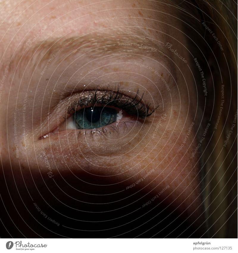 Sommersprosse Fröhlichkeit Pupille schwarz Kontaktlinse Schminke Wimpern Augenbraue Sommersprossen Frau Freundlichkeit Neugier blond geheimnisvoll Freude