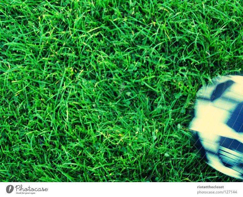 fußballplatz Wiese Gras Spielen Sommer Ballsport Fußball Freude