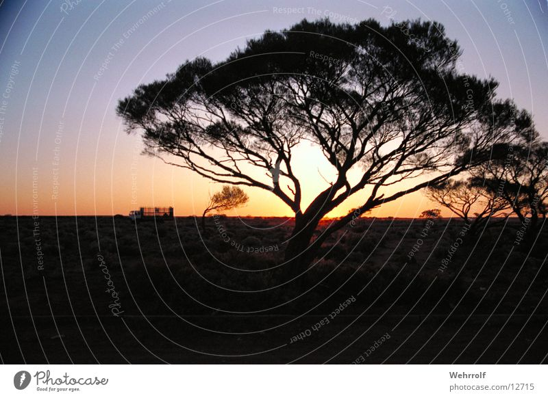 outback Australien Outback Sonnenuntergang Natur