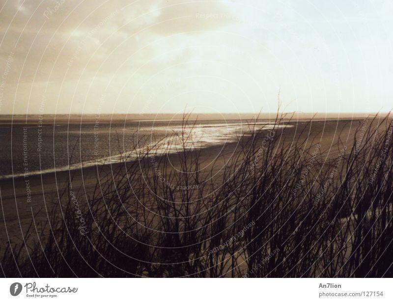 Das Meer kommt Ebbe Ameland dunkel Wolken Strand Küste Flut hell