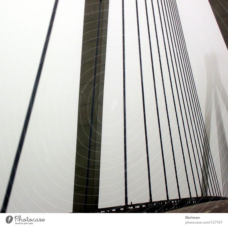 Geisterbrücke Nebel Brücke Säule Straße Leitplanke Stahlkabel grau Beton Wege & Pfade fahren Überqueren Fjord Einsamkeit schlechtes Wetter Seil Linie graphisch