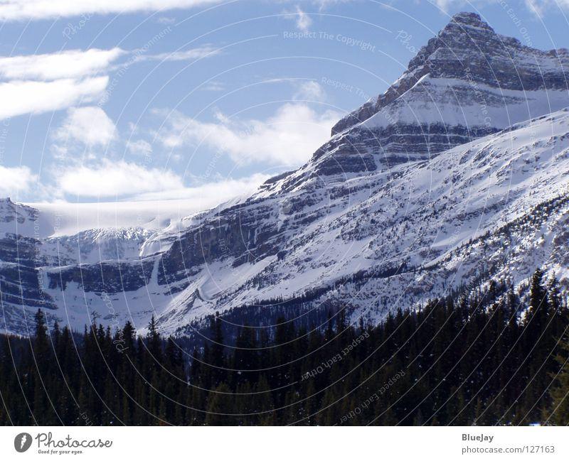 Bow Glazier / Bow Gletscher Winter Berge u. Gebirge Kanada Schneelandschaft Rocky Mountains