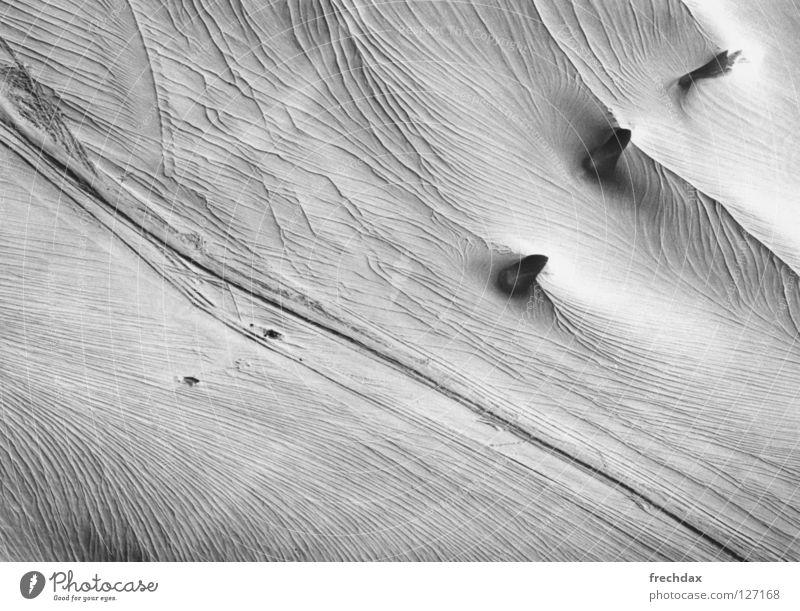 Dickhäuter Gletscher dick Eiszeit Skitour Ferien & Urlaub & Reisen kalt Skispur Ewiges Eis gefroren Österreich Kanton Graubünden Schweiz Schwarzweißfoto