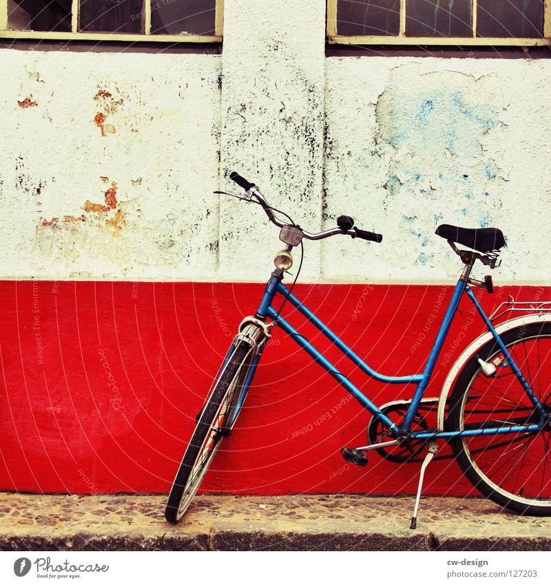 pommes rot/weiß blau Ferien & Urlaub & Reisen Sommer Freude schwarz gelb Erholung Herbst Spielen Bewegung springen Luft Lampe Zufriedenheit
