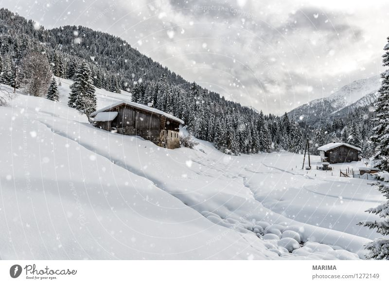 Winter landscape in the Alps ruhig Berge u. Gebirge Natur Landschaft Wolken Alpen kalt weiß mountains hill Deutschland Europa cold Lechtal Lechtaler Alpen calm