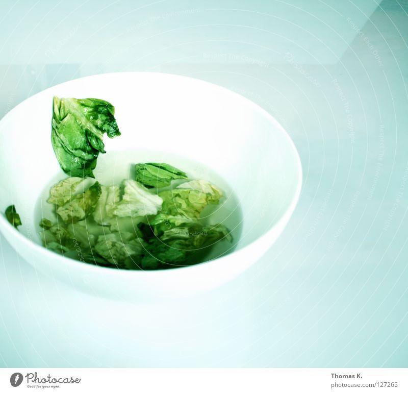 Nicht über den Tellerrand sehen weiß grün Gemüse Erdöl Schalen & Schüsseln Salat Kopfsalat Essig Salatblatt