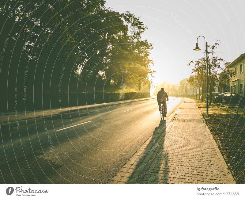 Fahrradfahrt am frühen Morgen im Sonnenaufgang Ferien & Urlaub & Reisen Mensch maskulin Mann Erwachsene 1 Fahrradfahren Straße authentisch Wärme weich Gefühle