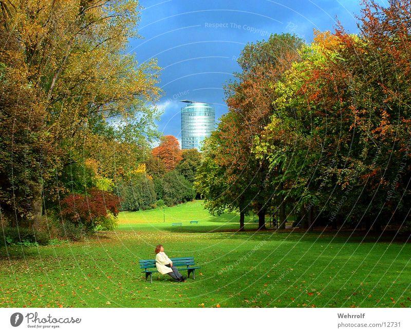 Entspannung im Park Frau Baum Wiese Bank Düsseldorf Hofgarten