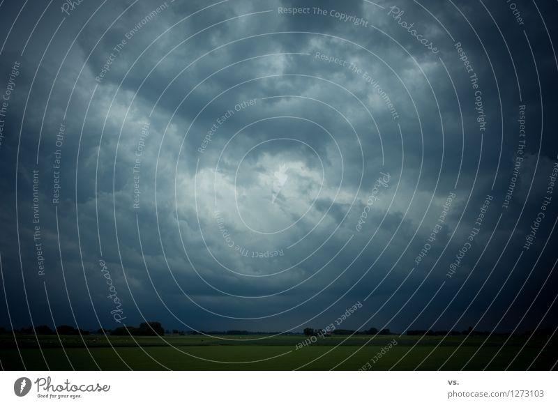 Sommer, Sonne, Sonnenschein Umwelt Natur Urelemente Himmel nur Himmel Wolken Gewitterwolken schlechtes Wetter Unwetter Wind Sturm Regen Wiese Feld Sehnsucht
