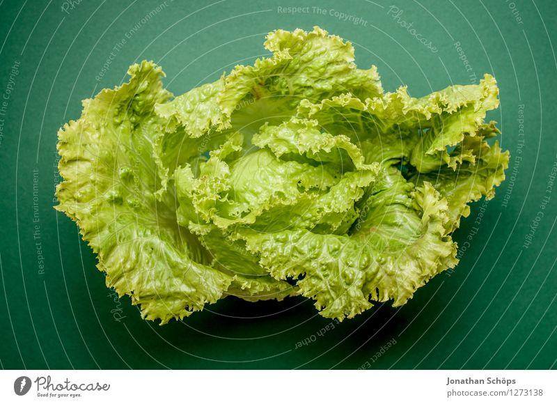 Der Kopf des Salates vor dunkelgrün Lebensmittel Gemüse Salatbeilage Ernährung Essen Frühstück Mittagessen Abendessen Bioprodukte Vegetarische Ernährung Diät