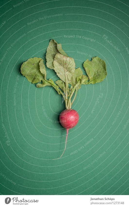 Das Radieschen grün rot Gesunde Ernährung Blatt Essen Lebensmittel leuchten ästhetisch rund Scharfer Geschmack Gemüse lecker Bioprodukte Diät
