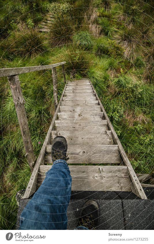 Wackelige Angelegenheit... Mensch Natur Ferien & Urlaub & Reisen blau Pflanze grün Sommer Gras Wege & Pfade Beine braun Fuß Treppe Tourismus Angst wandern