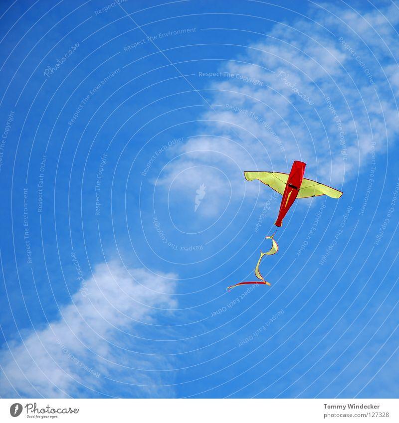 Kite Aerial Photography Himmel blau Strand Freude Wolken Herbst Spielen oben Freiheit Luft Kindheit Wind Freizeit & Hobby fliegen frei Flugzeug
