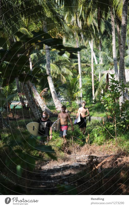 Jungle Surfers Lifestyle Freude Körper Abenteuer Ferne Freiheit Strand Meer Insel Wellen Sport Wassersport Surfen Mensch maskulin Junger Mann Jugendliche Haut