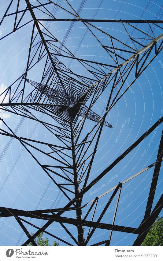 Verbindungen. Energiewirtschaft Himmel Wolken Baum Strommast Elektrizität Metall Linie hoch oben blau grün schwarz deutlich ästhetisch Farbfoto Außenaufnahme