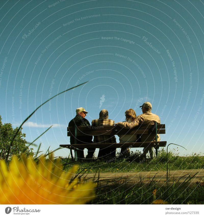 PARENTALGENERATIONENTREFFEN Mensch Senior Menschengruppe Sommer Ferien & Urlaub & Reisen ruhig Erholung sprechen Paar Park Freundschaft Zusammensein Ausflug paarweise Pause Bank