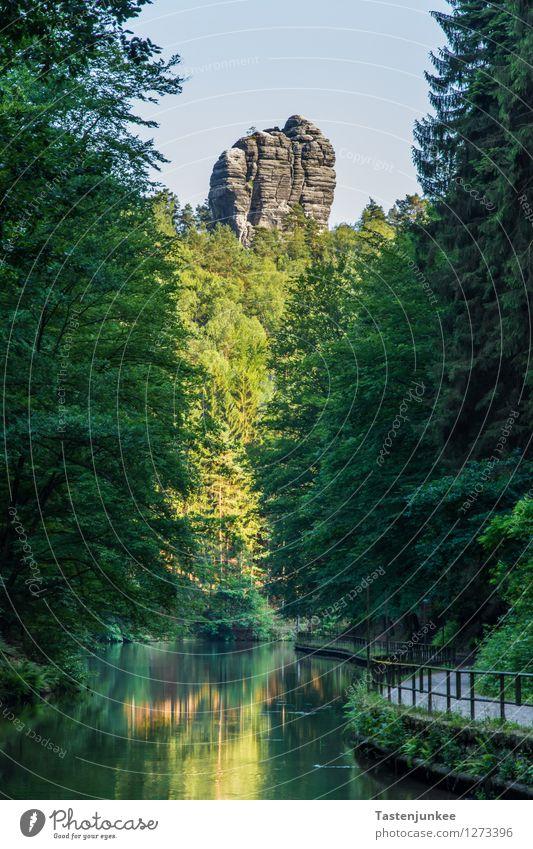 Elbsandsteinhochland Natur Landschaft Pflanze Erde Wasser Sonne Sommer Wald Hügel Felsen Berge u. Gebirge Elbsandstein Hochland wandern Abenteuer