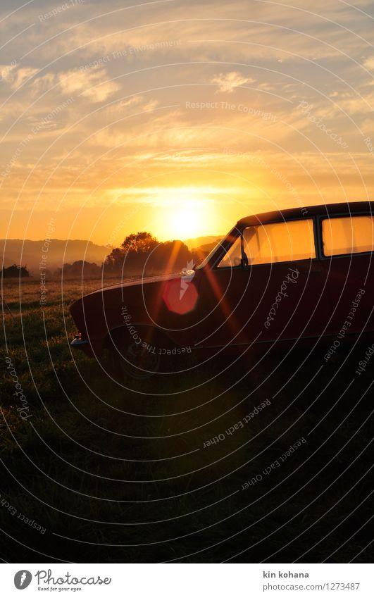 Morgentau Erholung Freizeit & Hobby Ferien & Urlaub & Reisen Tourismus Ausflug Abenteuer Ferne Camping Sommerurlaub wandern Natur Landschaft Herbst Gras Feld