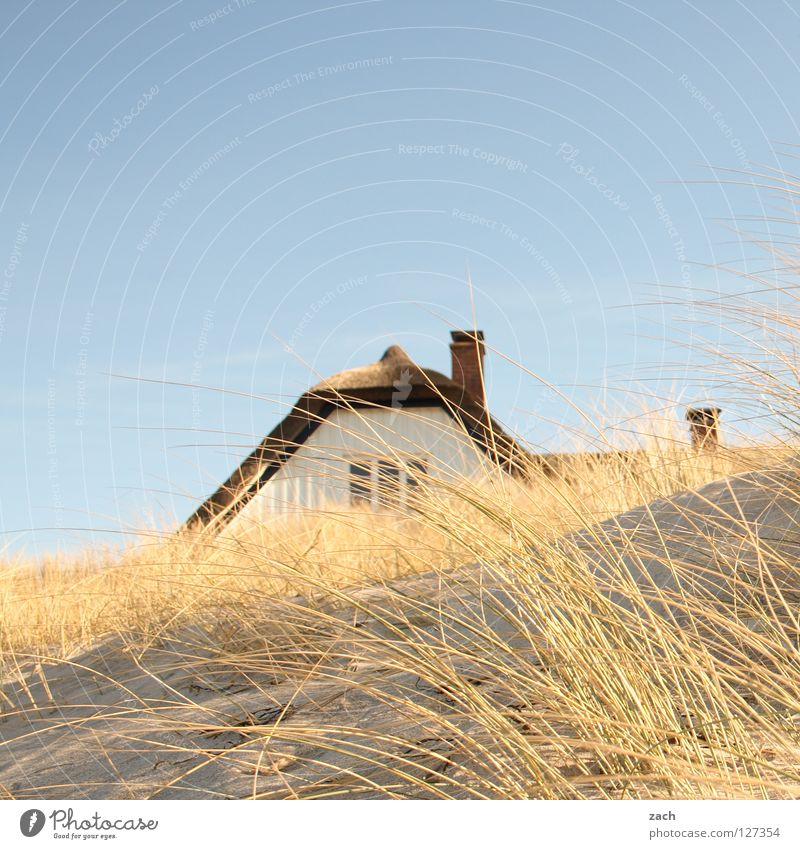 versteckt Meer Haus Strand Küste Darß Deich Ahrenshoop Schilfrohr Stranddüne Reed