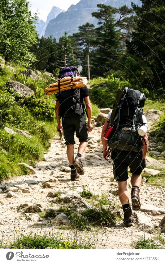 Zwei Wanderer und zwei Baguettes Mensch Natur Ferien & Urlaub & Reisen Pflanze Sommer Landschaft Tier Ferne Berge u. Gebirge Erwachsene Umwelt Freiheit Felsen