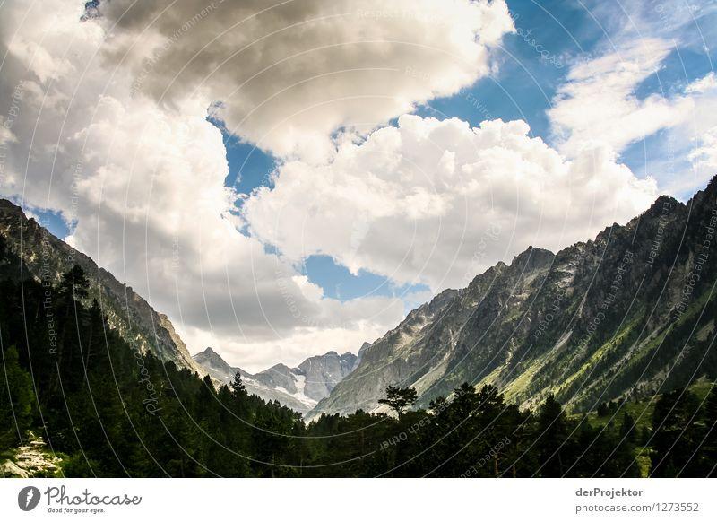 Pyrenäen-Wanderweg 18 Natur Ferien & Urlaub & Reisen Pflanze Sommer Landschaft Freude Tier Ferne Berge u. Gebirge Umwelt Gefühle Freiheit Felsen Tourismus Ausflug Lebensfreude