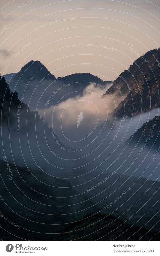 Sonnenuntergang mit Nebel Natur Ferien & Urlaub & Reisen Pflanze Sommer Landschaft Freude Tier Ferne Wald Berge u. Gebirge Umwelt Gefühle Freiheit Felsen