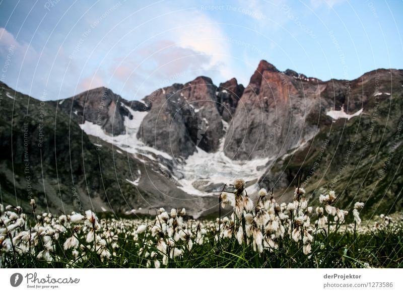 Pyrenäen-Wanderweg 5 Natur Ferien & Urlaub & Reisen Pflanze Sommer Landschaft Freude Tier Ferne Berge u. Gebirge Umwelt Gefühle Wiese Glück Freiheit Felsen