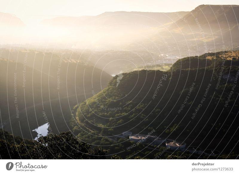 Sonnenaufgang in Südfrankreich Natur Ferien & Urlaub & Reisen Pflanze Sommer Landschaft Tier Ferne Wald Berge u. Gebirge Umwelt Gefühle Freiheit Stimmung